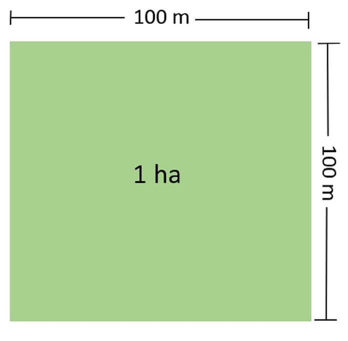 hecta la don vi do dien tich lon nhat - 1 công bằng bao nhiêu m2? Công thức quy đổi đơn vị đất - kien-thuc-xay-dung
