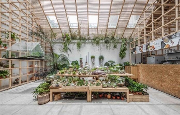 Tropical Forest - Kiến trúc xanh là gì? Tiêu chí, lợi ích, nguyên tắc - kien-thuc-xay-dung